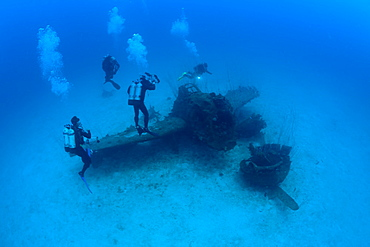Diver and Bomber near to USS Saratoga, Marshall Islands, Bikini Atoll, Micronesia, Pacific Ocean