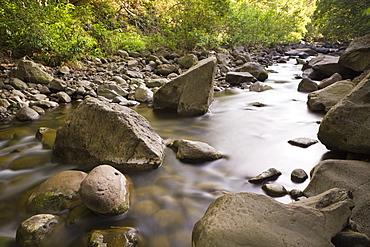 Creek at Kepaniwai County Park,  Iao Valley, Maui, Hawaii, USA