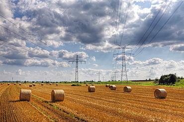 Electricity Pylon and Wheat Field, Munich, Bavaria, Germany