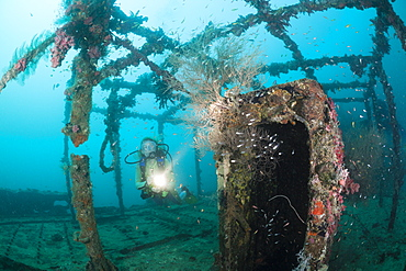 Superstructure of Kuda Giri Wreck, South Male Atoll, Maldives