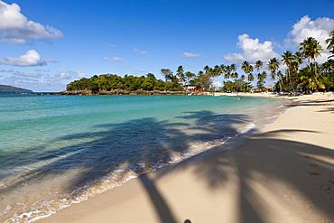 Playa Rincon Beach near Las Galeras, Samana Peninsula, Dominican Republic, West Indies, Central America