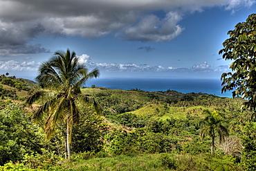 Landscape of Las Terrenas, Samana Peninsula, Dominican Republic, West Indies, Central America