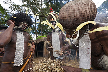 Dani man making fire the old way, Baliem Valley, West Papua, Indonesia, Southeast Asia, Asia