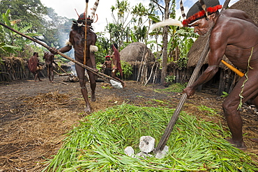 Dani tribesmen heat stones in fire for earth oven, Baliem Valley, West Papua, Indonesia, Southeast Asia, Asia