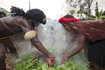 Pig Festival in Dani Village, Baliem Valley, West Papua, Indonesia, Southeast Asia, Asia