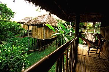 Amazon Basin, Napo River (tributary) La Selva Jungle Lodge individual cabanas surrounded by rainforest, Amazon, Ecuador