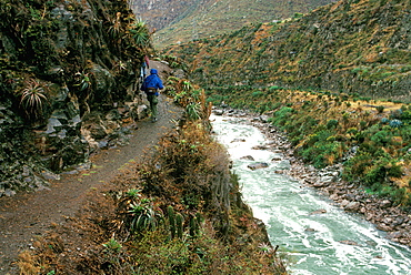 Hikers on the Inca Trail passing above the rapids of the Urubamba River near Chilca on the way to Machu Picchu, Peru