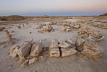 Rocks at the Egg Factory at dusk, Bisti Wilderness, New Mexico, United States of America, North America