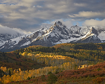 Mears Peak with snow and yellow aspens in the fall, Uncompahgre National Forest, Colorado, United States of America, North America
