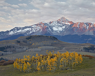 Wilson Peak with a dusting of snow in the fall, San Juan National Forest, Colorado, United States of America, North America