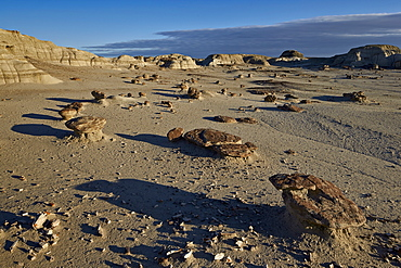 Rocks in the badlands, Bisti Wilderness, New Mexico, United States of America, North America