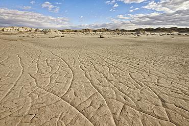 Cracked ground, Bisti Wilderness, New Mexico, United States of America, North America