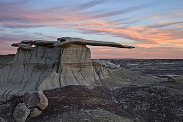 King of Wings at sunset, Bisti Wilderness, New Mexico, United States of America, North America