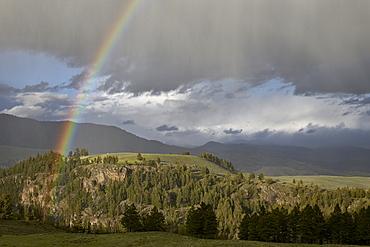 Rainbow, Yellowstone National Park, UNESCO World Heritage Site, Wyoming, United States of America, North America