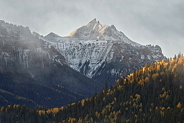Snow-covered mountain in the fall, Uncompahgre National Forest, Colorado, United States of America, North America