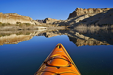 Bluff and stand of bushes reflected in Lake Powell from a kayak, Glen Canyon National Recreation Area, Utah, United States of America, North America