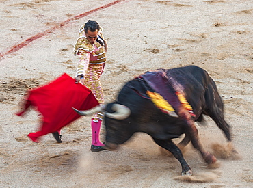 Bullfights, Festival of San Fermin, Pamplona, Navarra, Spain, Europe