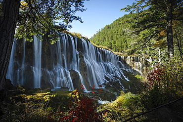 Pearl Shoal Waterfall, Jiuzhaigou (Nine Village Valley), UNESCO World Heritage Site, Sichuan province, China, Asia