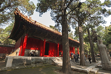 Confucius Forest and Cemetery, Qufu, UNESCO World Heritage Site, Shandong province, China, Asia