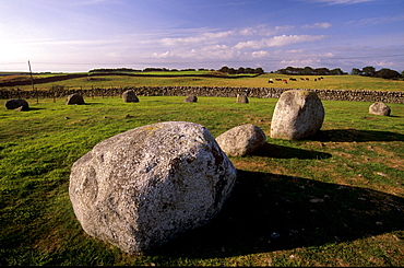 Torhouskie Stone Circle dating from Neolithic times, near Wigtown, Galloway, Dumfries and Galloway, Scotland, United Kingdom, Europe