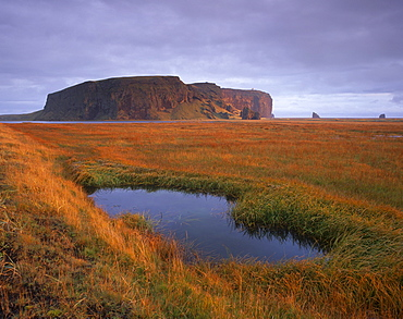 Dyrholaey inselberg and cliffs, southernmost point of Iceland, from the low-lying coast near Vik, Iceland, Polar Regions
