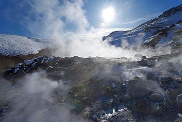 Geothermal activity of mudpots, hot springs and fumaroles, at Krisuvik (Krysuvik-Seltun), Reykjanes Peninsula, south-west Iceland, Iceland, Polar Regions