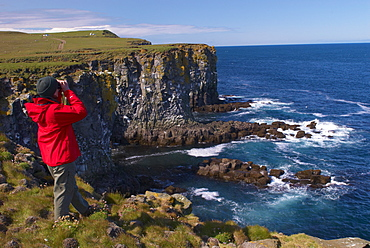 Birdwatching at Langanes peninsula, bird cliffs and gannetry, North Iceland (Nordurland), Iceland, Polar Regions