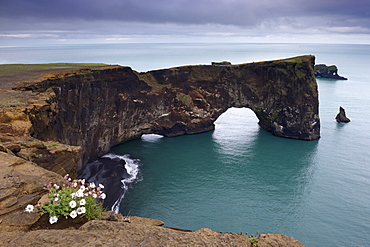 Dyrholaey natural arch, the southernmost point in Iceland, near Vik, in the south of Iceland (Sudurland), Iceland, Polar Regions