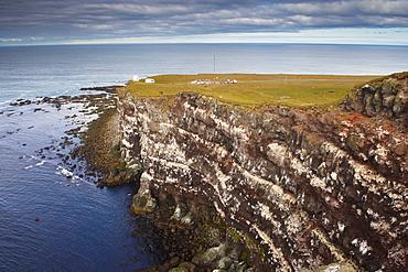 High cliffs rising to 400m at Latrabjarg, the largest bird colony in Europe, West Fjords region (Vestfirdir), Iceland, Polar Regions