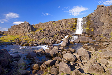 Oxara River tumbles down the Almannagja cliff face at Oxarafoss, Thingvellir National Park, UNESCO World Heritage Site, south-west Iceland (Sudurland), Iceland, Polar Regions