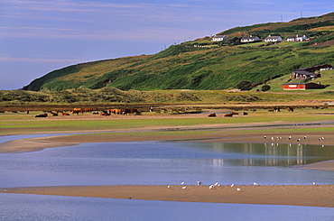 Barley Cove, near Dough, Mizen peninsula, County Cork, Munster, Republic of Ireland, Europe