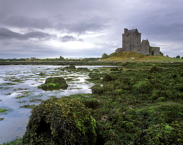 Dunguaire Castle dating from the 16th century and coast, near Kinvarra, County Galway, Connacht, Republic of Ireland, Europe