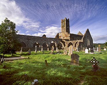 Timoleague Abbey, Franciscan abbey dating from the 13th century with 16th century tower, Timoleague, County Cork, Munster, Republic of Ireland, Europe