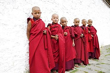 Young Buddhist monks, Karchu Dratsang Monastery, Bumthang, Bhutan, Asia