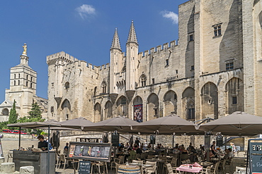 The Popes Palace, Avignon, UNESCO World Heritage Site, Vaucluse, Provence, France, Europe