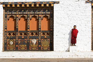 Buddhist monk, Punakha Dzong, Punakha, Bhutan, Asia