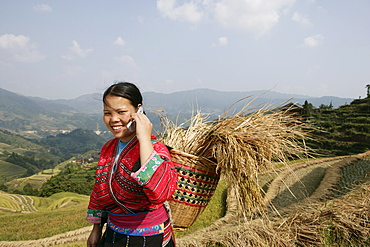 Woman of Yao minority with cellphone, Longsheng terraced ricefields, Guilin, Guangxi Province, China, Asia