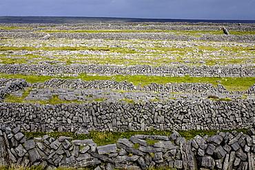 Stone walls on Inis Mor (Inishmore), Aran Islands, Republic of Ireland, Europe