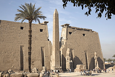 Luxor Temple, Thebes, UNESCO World Heritage Site, Egypt, North Africa, Africa