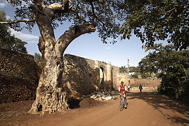 The Buda gate, one of six gates leading into the ancient walled city of Harar, Ethiopia, Africa