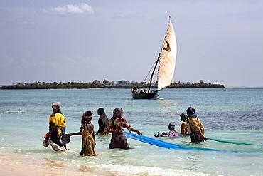 Women fishing on Kendwa Beach, Zanzibar, Tanzania, East Africa, Africa