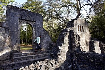 Gedi ruins, Malindi, Kenya, East Africa, Africa
