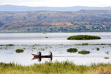 The Victoria Nile in Murchison National Park, Uganda, East Africa, Africa