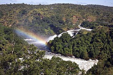 Murchison Falls, Murchison National Park, Uganda, East Africa, Africa