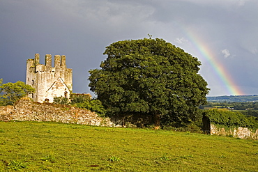 Rainbow near Kilcash Castle, County Tipperary, Munster, Republic of Ireland, Europe