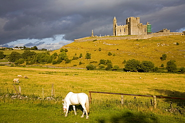 Rock of Cashel, Cashel Town, County Tipperary, Munster, Republic of Ireland, Europe