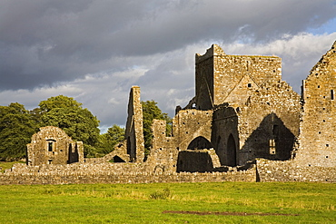 Hore Abbey, Cashel Town, County Tipperary, Munster, Republic of Ireland, Europe
