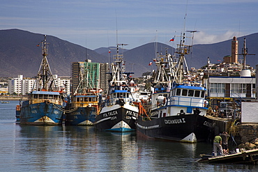 Fishing boats in Coquimbo Port, Norte Chico Region, Chile, South America