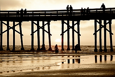 Pier at sunset, Newport Beach, Orange County, California, United States of America, North America