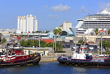 Tugboats and cruise ships in Port Everglades, Fort Lauderdale, Florida, United States of America, North America